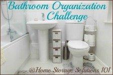 bathroom organization challenge