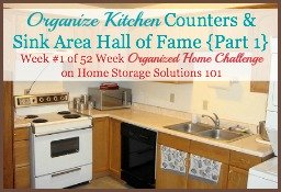 organize kitchen counters hall of fame