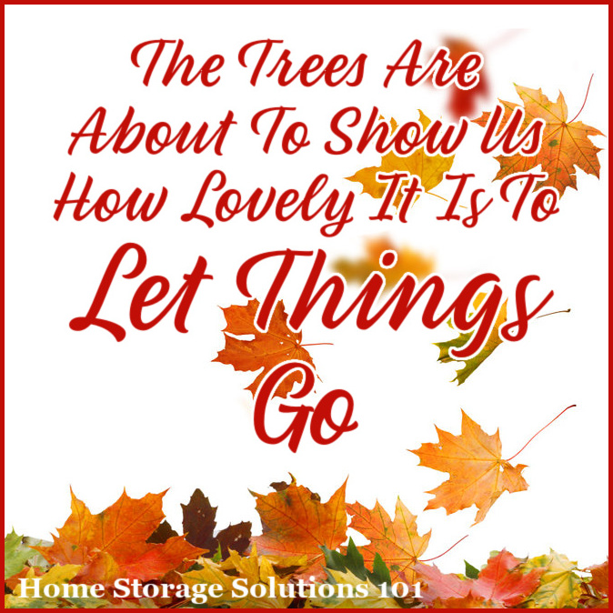 The trees are about to show us how lovely it is to let things go {Fall decluttering checklist, on Home Storage Solutions 101}
