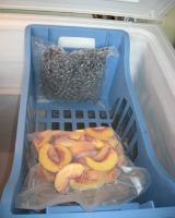 freezer basket holding foodsaver bags