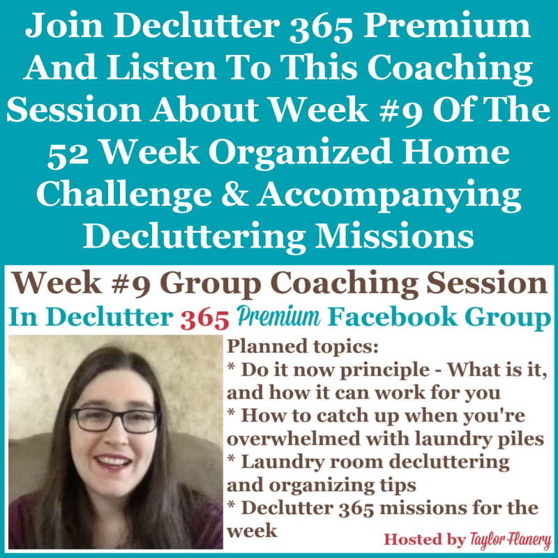 Join Declutter 365 premium and listen to this coaching session about Week #9 of the 52 Week Organized Home Challenge and accompanying decluttering missions, about laundry room organization, as well as about decluttering and organizing other areas of your home {on Home Storage Solutions 101}