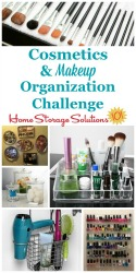 Cosmetics and makeup organization challenge
