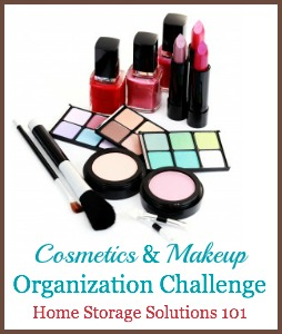 Cosmetics & Makeup Organization Challenge, with step by step instructions {part of the 52 Week Organized Home Challenge on Home Storage Solutions 101}