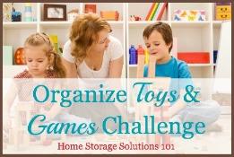 Organize Toys & Games Challenge