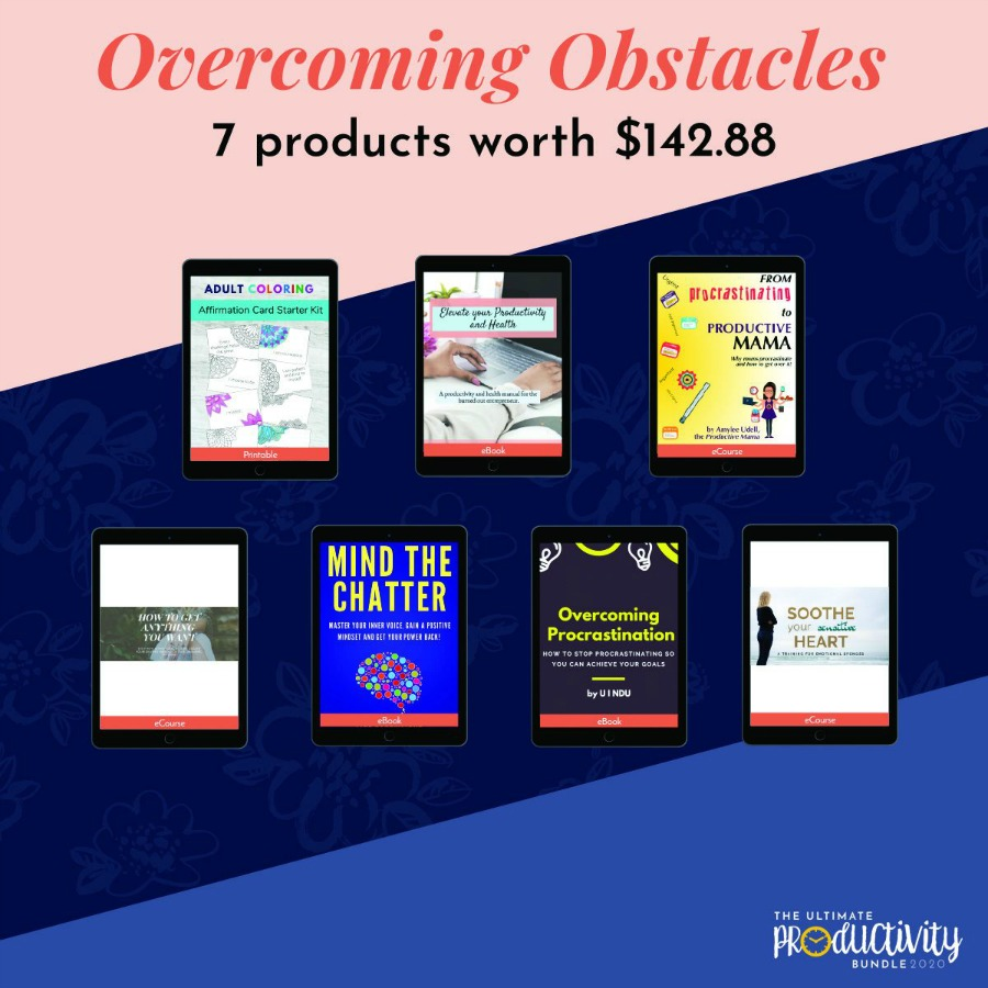 Resources included in the 2020 Ultimate Productivity Bundle about overcoming obstacles
