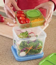 rubbermaid lunch blox salad kit