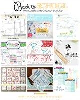 Back to School Printable Organizing Bundle sale