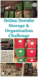 christmas decoration storage challenge