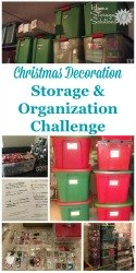 Christmas decoration storage and organization challenge