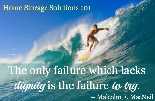 The only failure which lacks dignity is the failure to try.
