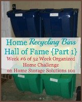 home recycling bin hall of fame {part 1}