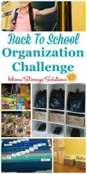 Back to School Organization Challenge