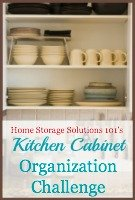 Kitchen Cabinet Organization Challenge