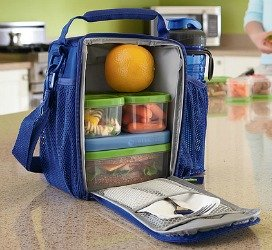 rubbermaid lunch blox lunch bag