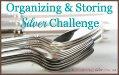 organizing and storing silver challenge