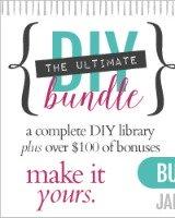 Ultimate DIY Bundle