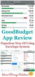 GoodBudget App Review