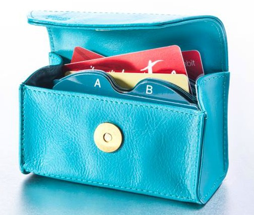 Card Cubby organizer, for holding gift cards and loyalty cards in your wallet in a mini-file {featured on Home Storage Solutions 101}