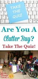 Clutter Bug