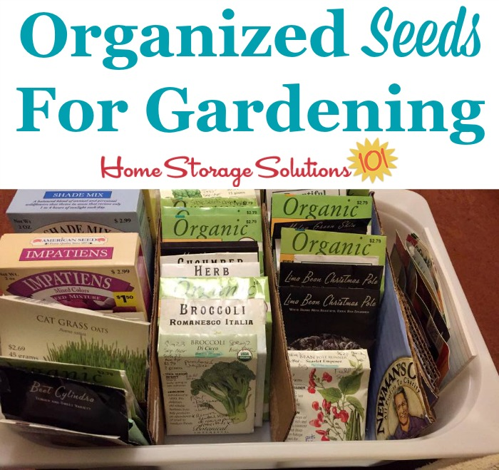 Organized seeds for use in gardening {featured on Home Storage Solutions 101}
