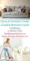 Clean & Declutter Under Couch