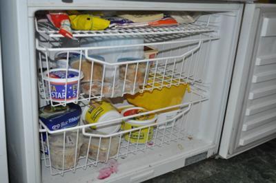 Fridge freezer before