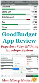 GoodBudget App Review