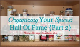 organizing your spices hall of fame {part 2}