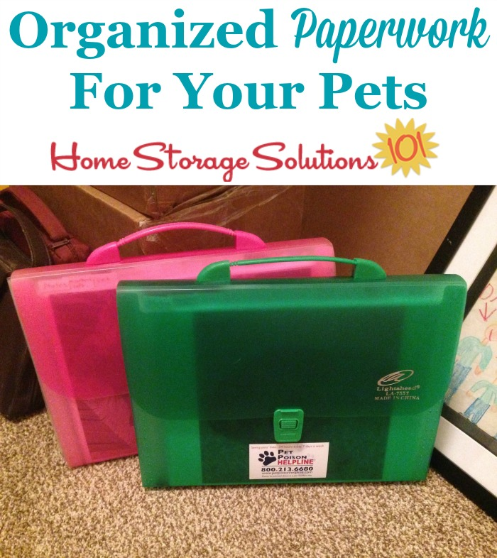 Organize your pet's paperwork, like a reader Samantha did, so it was easy to find and portable to take with her if needed {featured on Home Storage Solutions 101} #OrganizedHome #OrganizingTips #PaperOrganization
