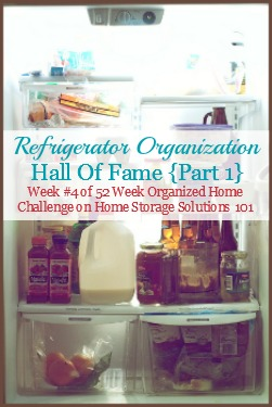 Refrigerator Organization U0026 Storage Ideas {Hall Of Fame Part 1}