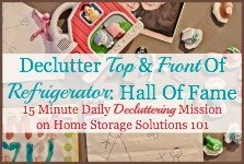 Declutter refrigerator front and top hall of fame
