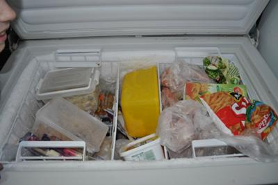 Chest freezer before